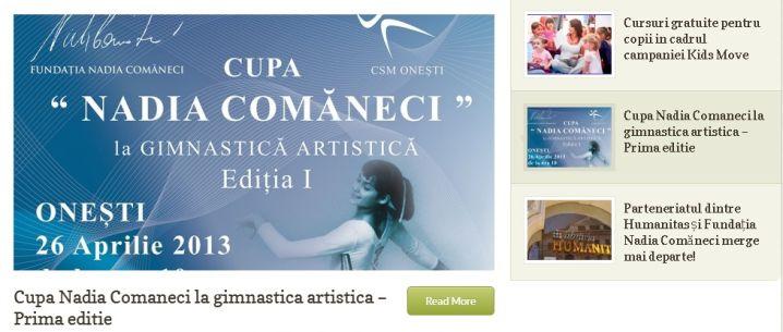 Site web Fundatia Nadia Comaneci - Sector web