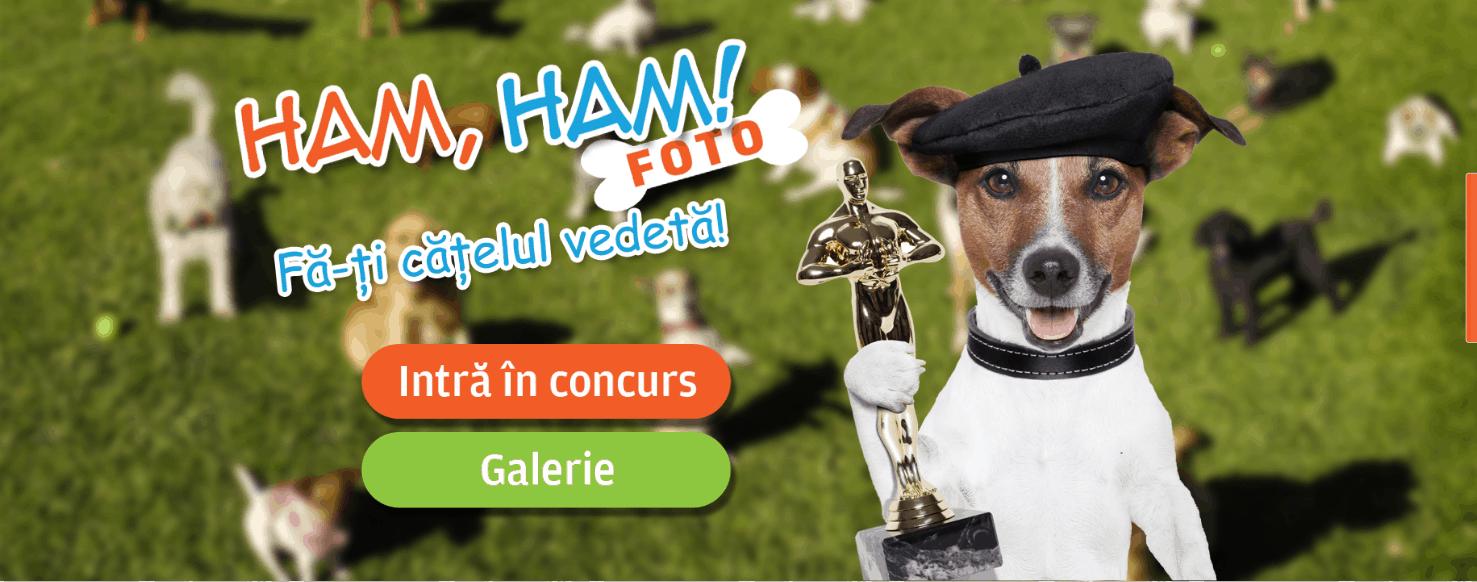 Concurs foto Ham Ham Foto! - EEC