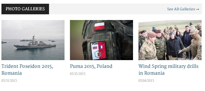 Dezvoltare site web Wordpress: Balkan Defense - Sector web
